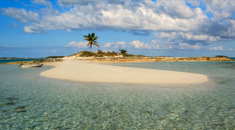 Picture of Compass Cay – Shroud Cay